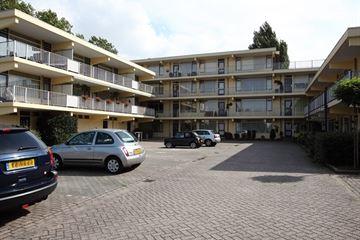 Rozenhof 11