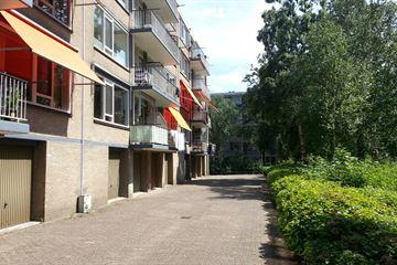 Schalkeroord 243