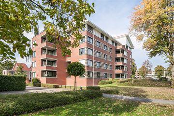 Ulfershof 21