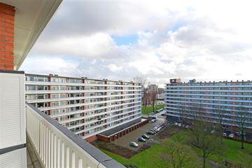 Boutenburg 317