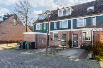 Druyvesteynstraat 10