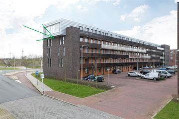 Noordmanshof 100