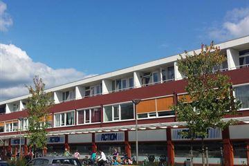 Ruys de Beerenbrouckstraat 41