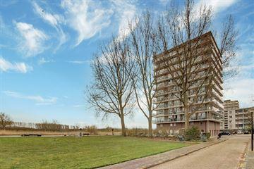 Adriaen Brouwerstraat 138
