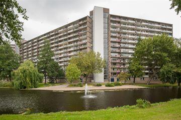 Schubertplein 229