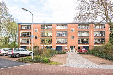 Wittenburg 15