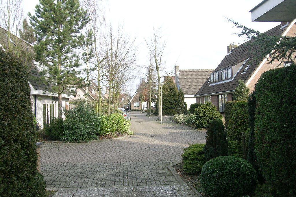View photo 3 of Beukenlaan 203