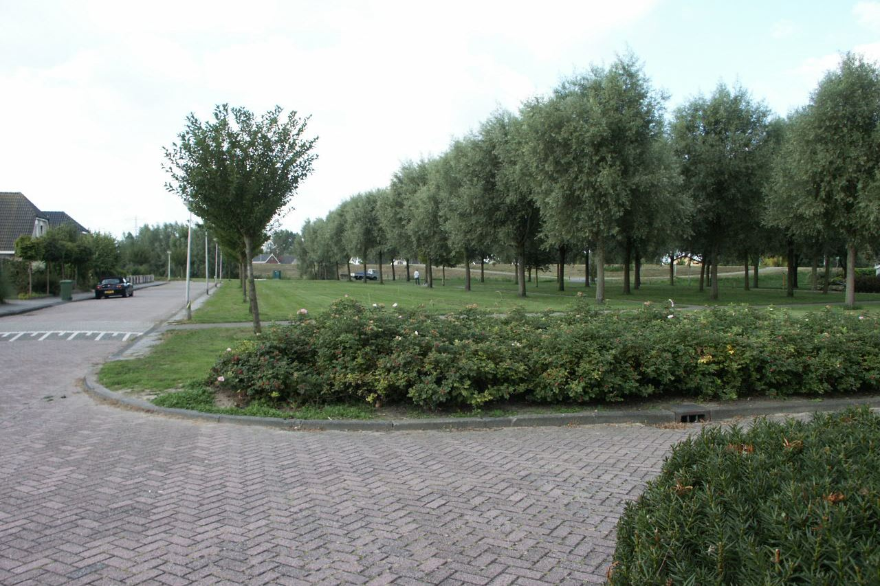 Bekijk foto 3 van Mien Sneevliet-Draaijerstraat 9