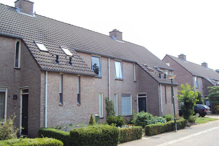 Kamille / Anemoon / Sint Janskruid Type A