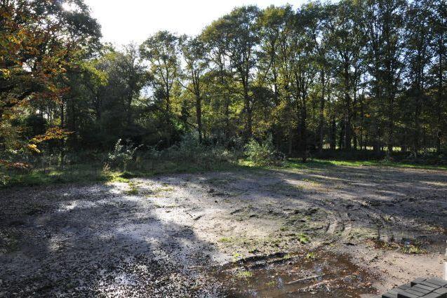 Bekijk foto 3 van C. de Haasweg 4