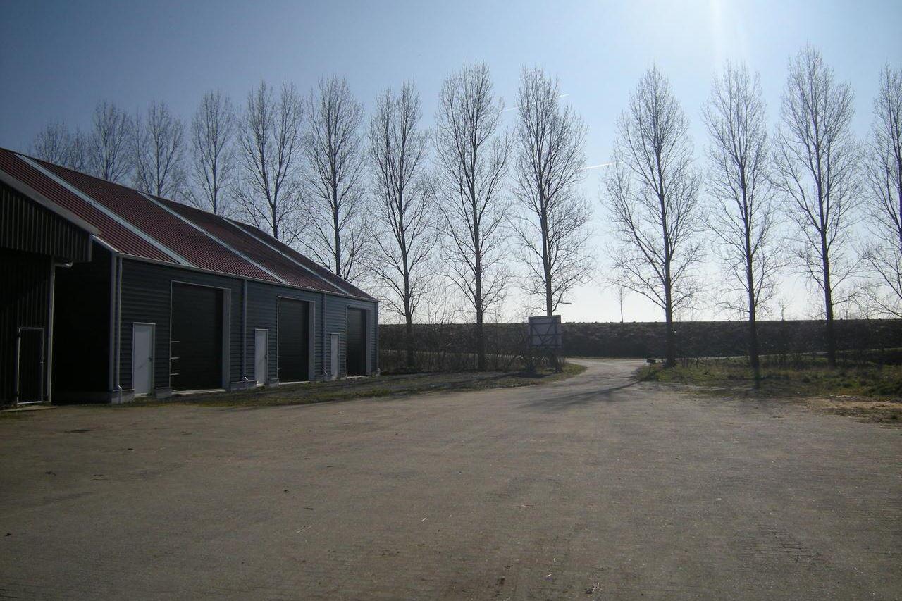 Bekijk foto 4 van Boomdijk 26 .