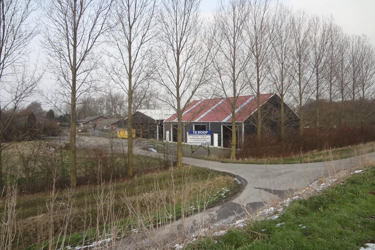 Bekijk foto 5 van Boomdijk 26 .