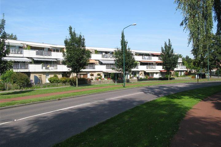Ebbenhorst 1 - 35d / Homoet 1 - 49 eo: Appartementen