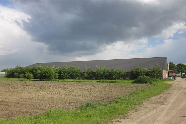 Hofweg / Nieuwe Peeldijk 55a, America