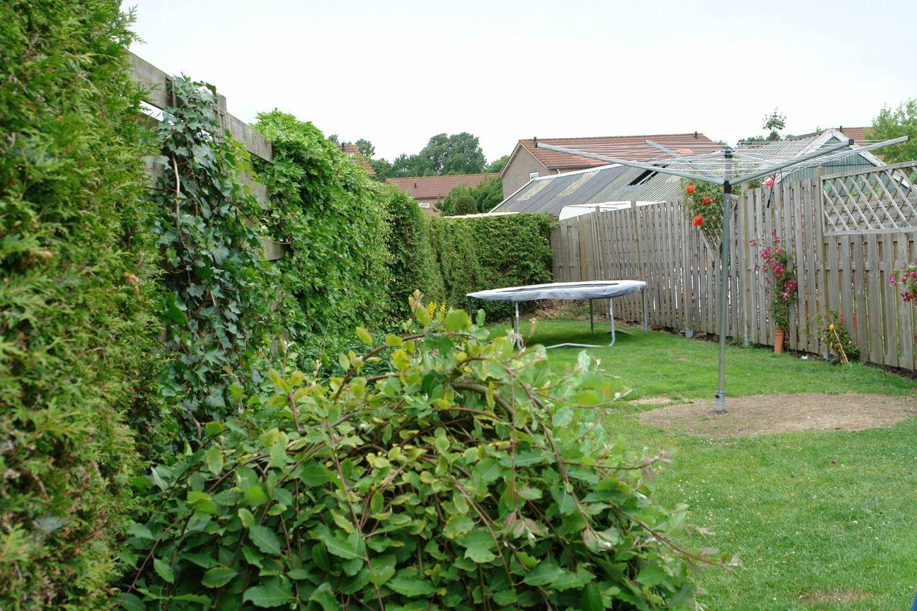 Bekijk foto 5 van Molenweg 26