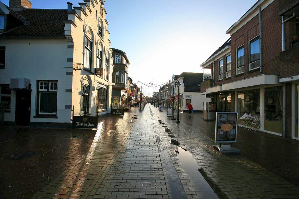 Bekijk foto 2 van Friesestraat 50