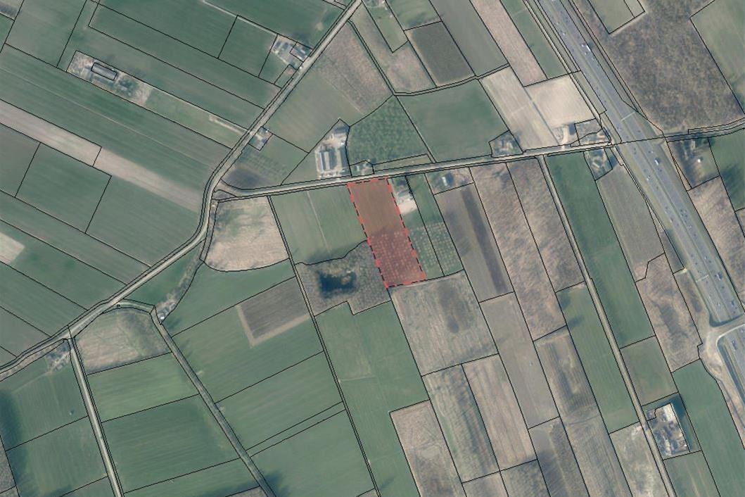 Bekijk foto 3 van Kooiweg West