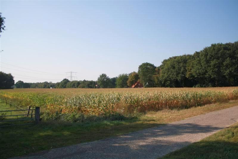 Bekijk foto 2 van Vlierdijk