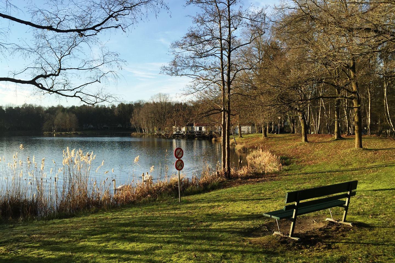Bekijk foto 2 van Heidestraat 103 - 1 Rekem-Belgie