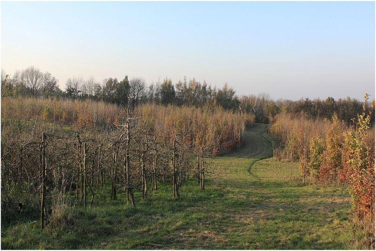 View photo 5 of Putbroekerweg