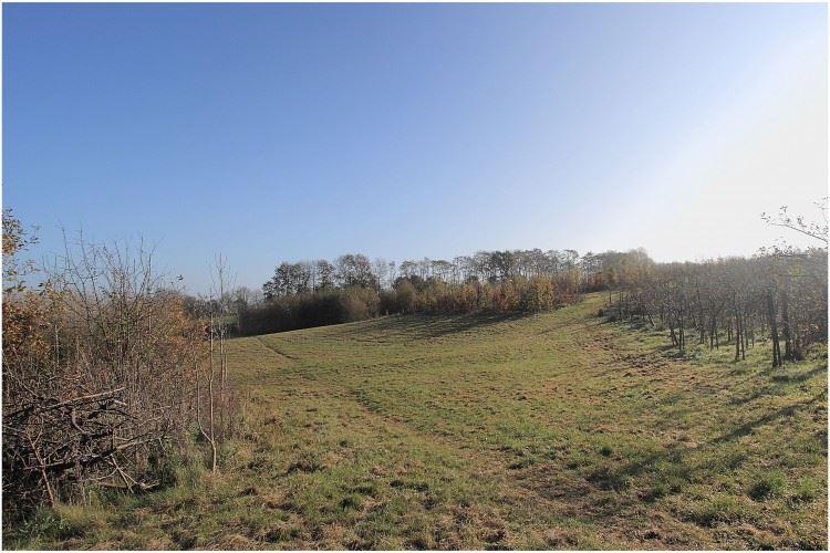 View photo 6 of Putbroekerweg