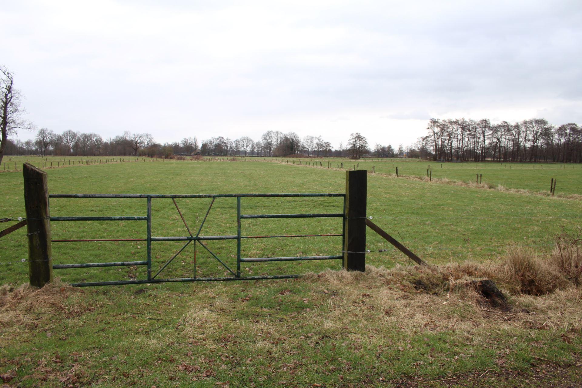 Agrarische grond wenum wiesel zoek agrarische grond te for Landbouwgrond te koop