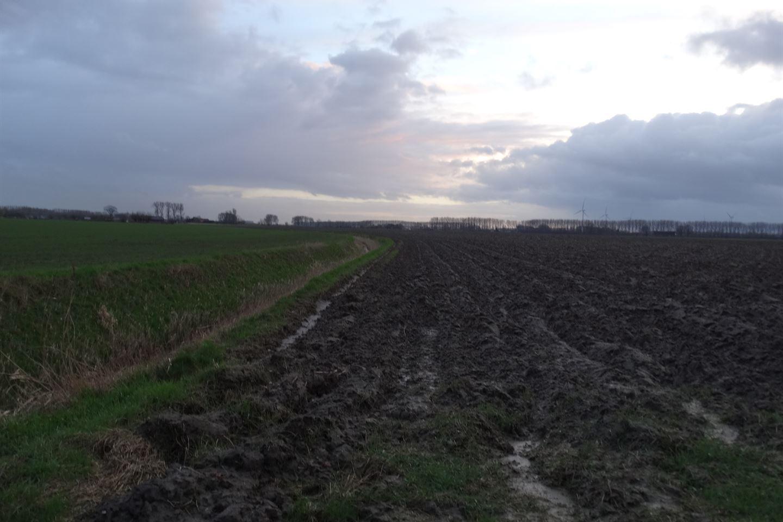 Bekijk foto 2 van Buthweg