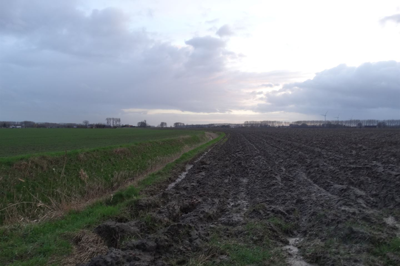 Bekijk foto 4 van Buthweg