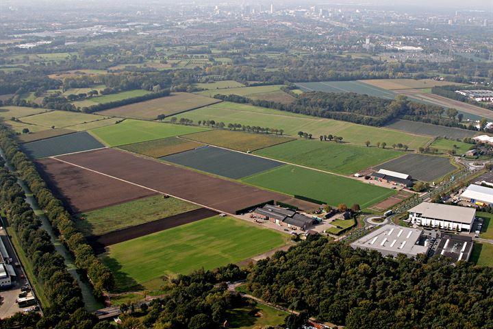 Collse Hoefdijk, Nuenen