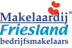 Makelaardij Friesland, Bedrijfsmakelaars