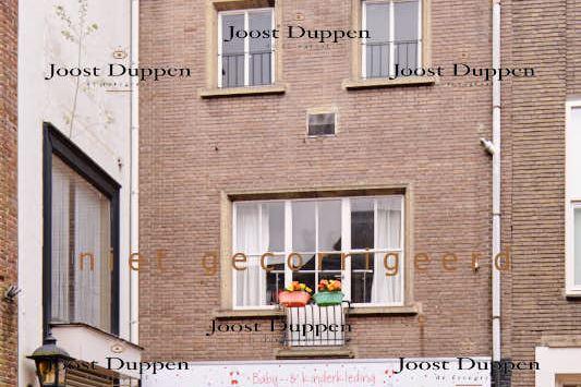 Bekijk foto 2 van Ameidestraat 3