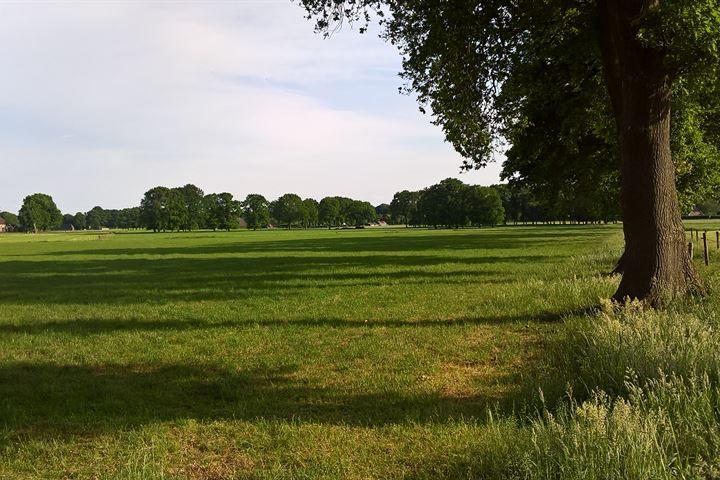 Velddijk
