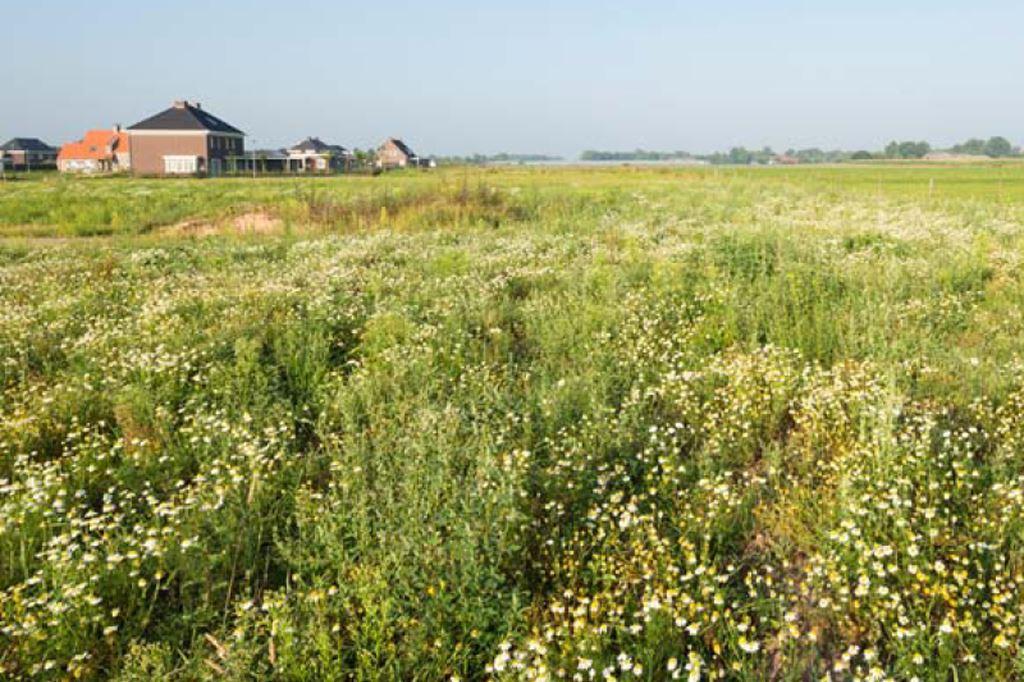 Bekijk foto 1 van Dörperfeld (Bouwnr. 073)