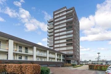 P C Hooftstraat 51