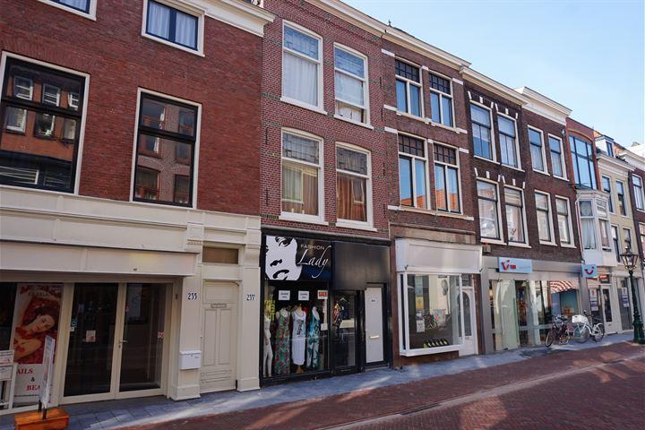 Haarlemmerstraat 233, Leiden