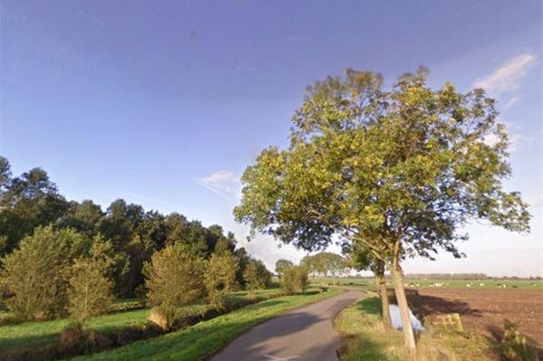 Bekijk foto 3 van Elzenweg