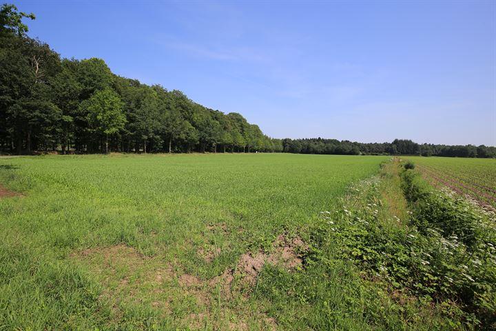 Moraineweg, Spier (Gem. Midden-Drenthe)