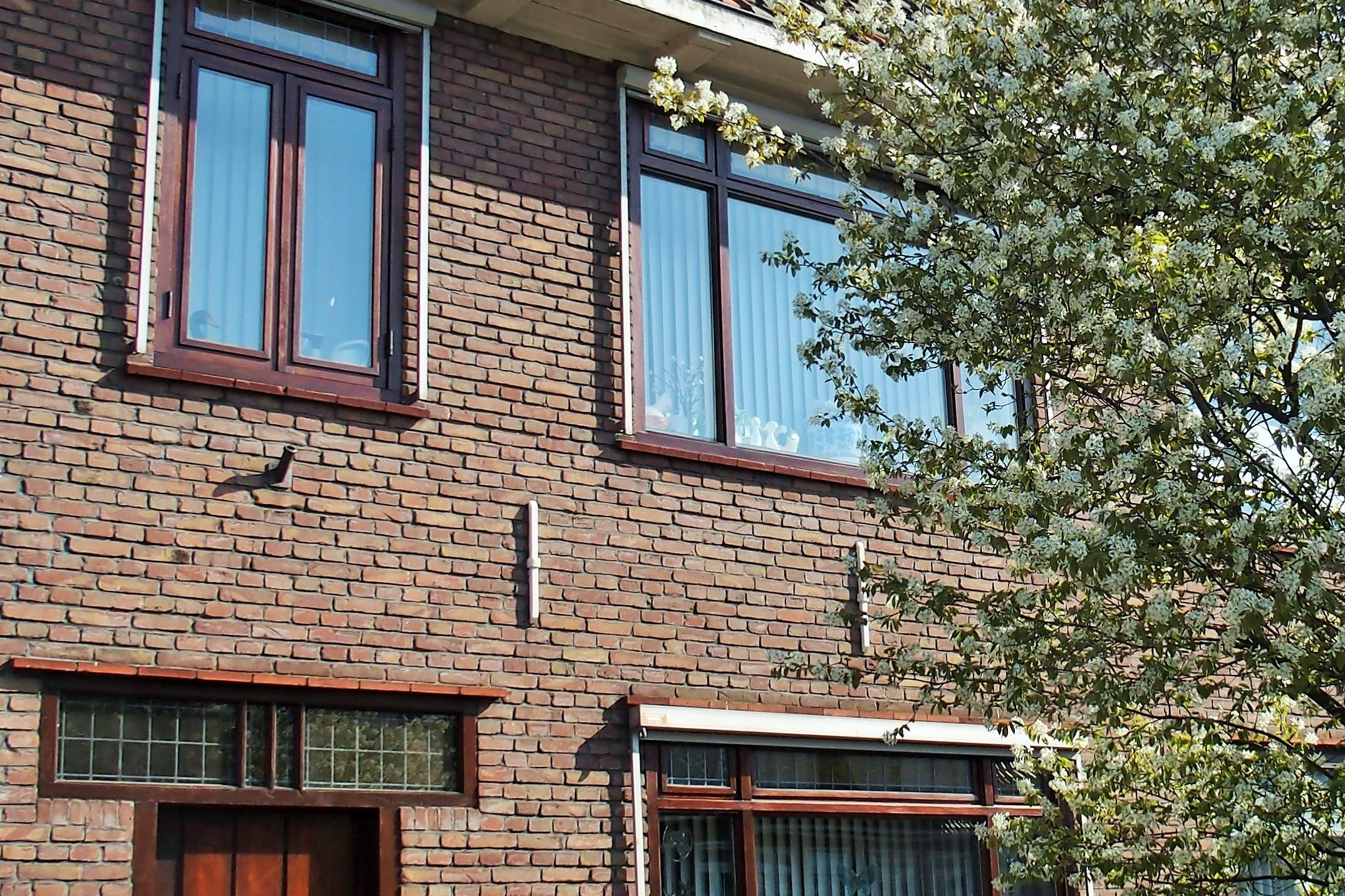 Huis te koop: rozenlaan 61 3051 ll rotterdam [funda]