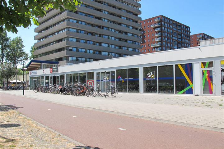 Papsouwselaan 474 B, Delft