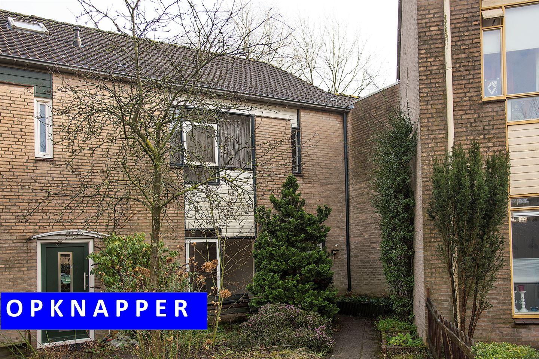 View photo 1 of Paul Pellastraat 188