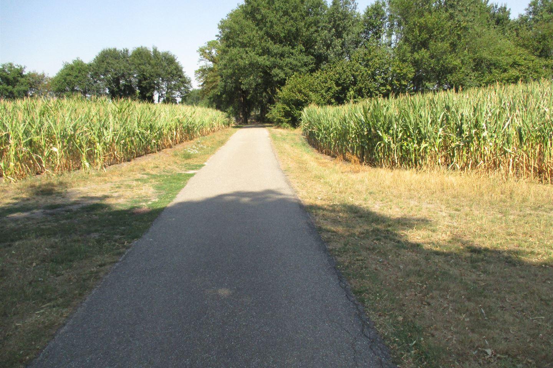 Bekijk foto 3 van Hondelinkweg