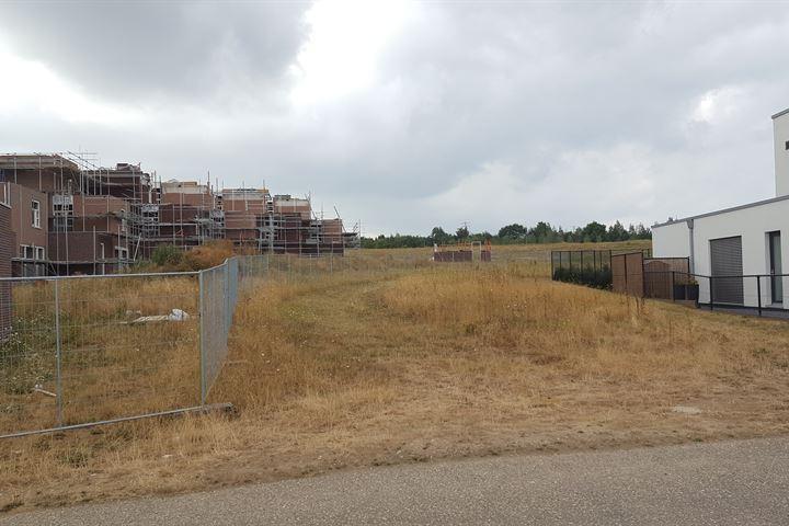 Klaproos, Park Hoogveld Heerlen
