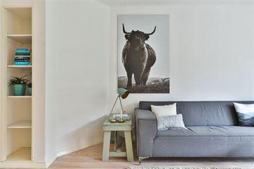 Koopwoningen Groningen - Appartementen te koop in Groningen [funda]