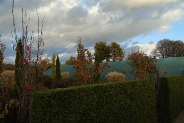 Bekijk foto 5 van Heeswijksestraat 4