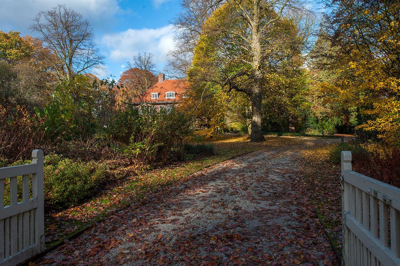 Bekijk foto 5 van Bredaseweg 387