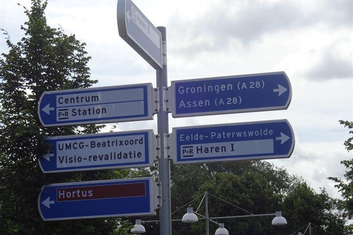 Nesciolaan, Haren (GR)