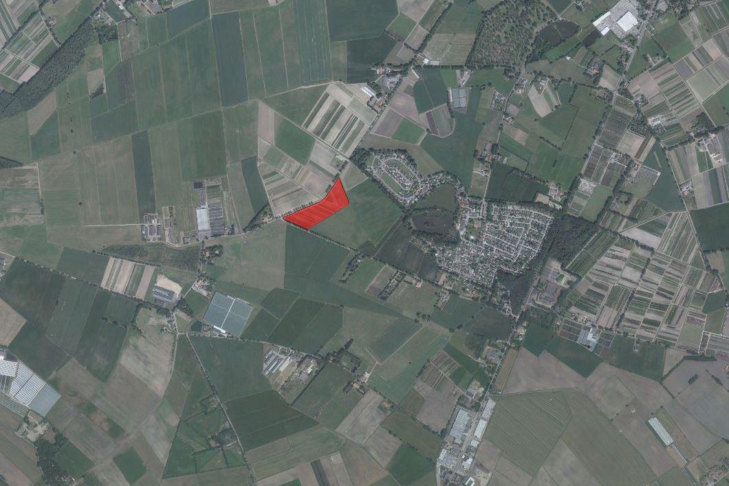 Bekijk foto 2 van Kalmthoutsebaan perceel boomkwekerij grond