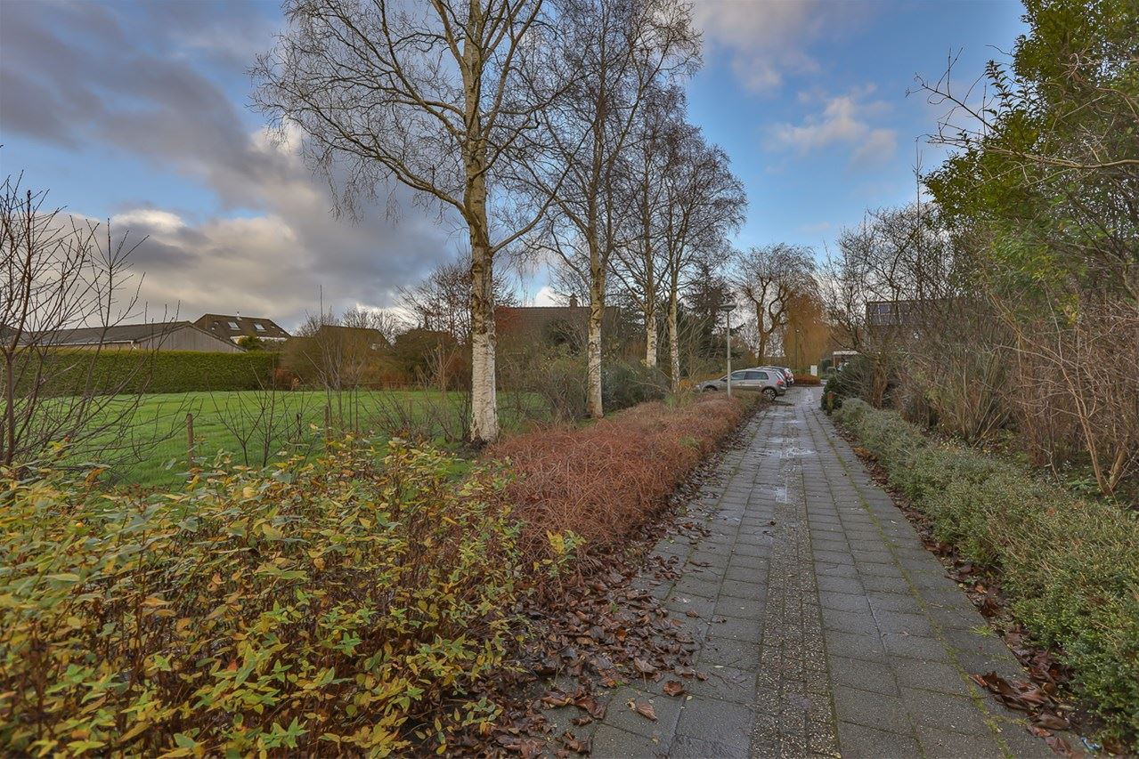 View photo 6 of Grote Leijen