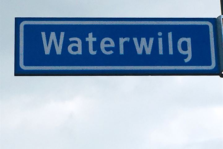 Waterwilg