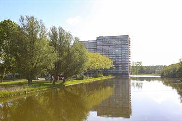 Oost-Dorsch 48